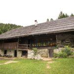Dnevni počitniški tabor na Kavčnikovi domačiji