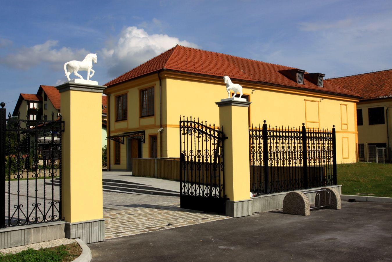 Razstava ob 10. obletnici Muzeja usnjarstva na Slovenskem