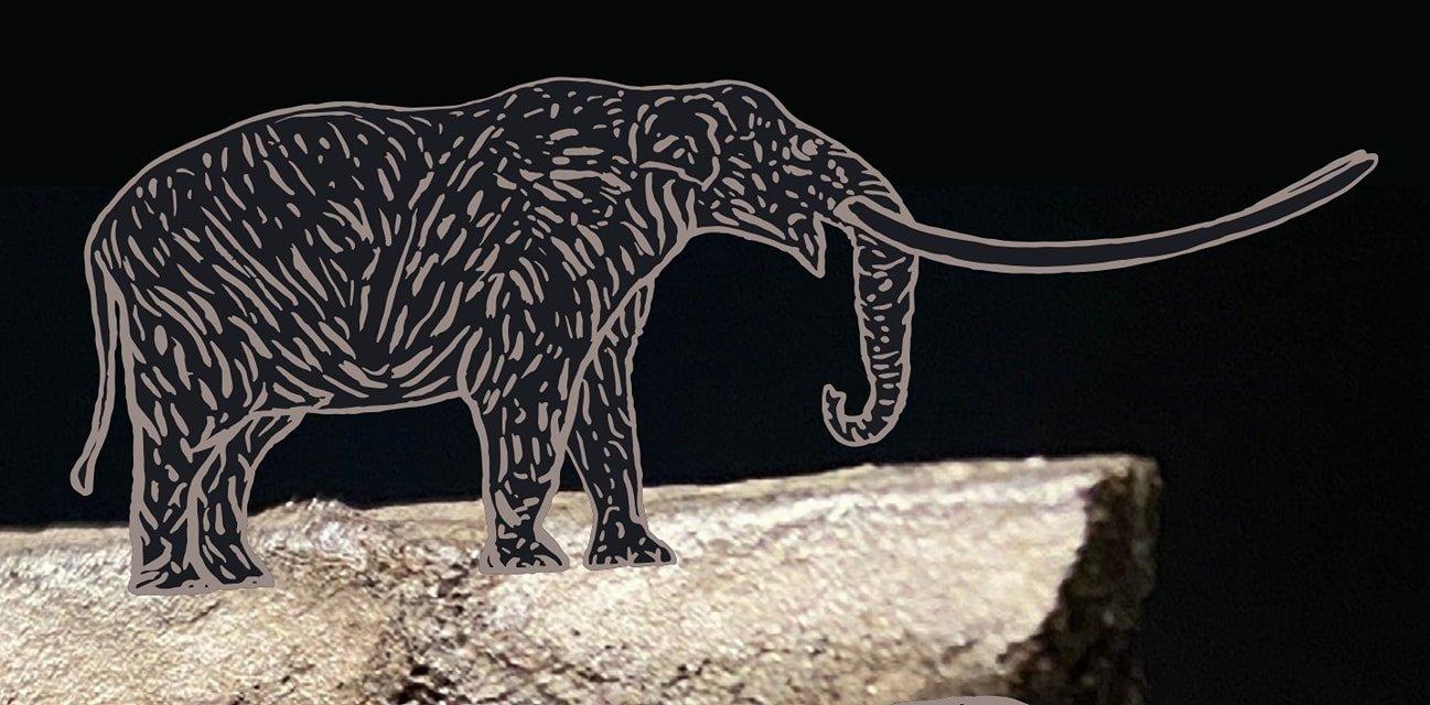 Odprtje prenovljene stalne razstave Mastodont